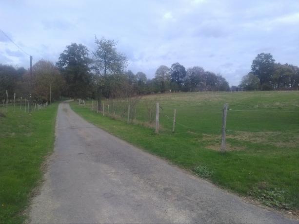 Haras-de-13-hectares