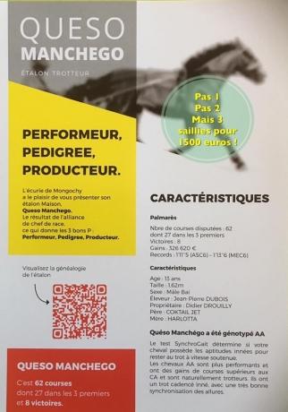3-saillies-de-Queso-Manchego-pour-1500-euro;-HT