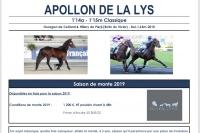 Apollon-de-la-lys