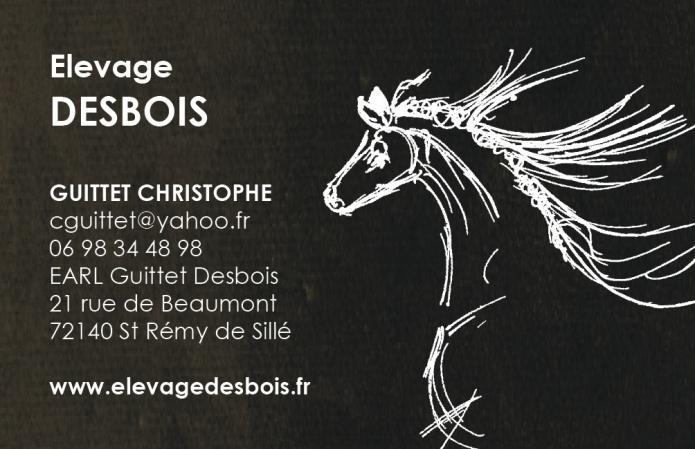 Elevage-DESBOIS---Foal-sharing-ou-praªt-de-jument-0
