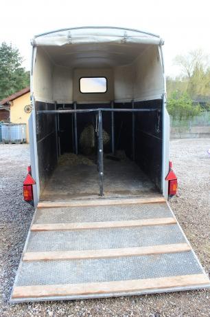 Van-westfalia-avec-2-places-pour-chevaux-ou-poney