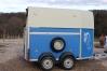 Van-westfalia-avec-2-places-pour-chevaux-ou-poney-1
