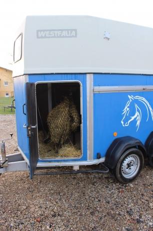 Van-westfalia-avec-2-places-pour-chevaux-ou-poney-0