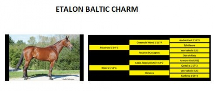Baltic-Charm