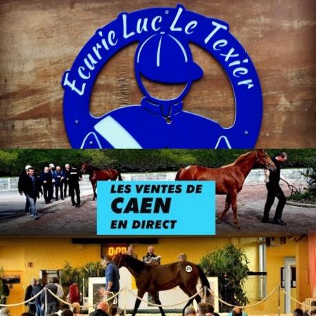 Ventes-de-Caen