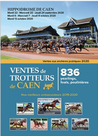 Courtier-present-a-la-vente-de-yearlings-a-Caen
