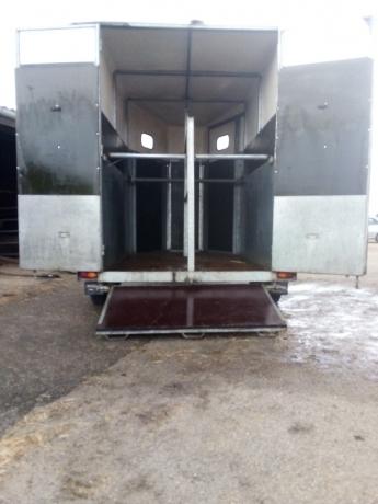 Vans-2-chevaux-2013