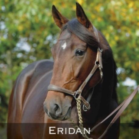 Eridan-0