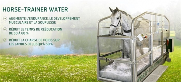 HORSE-TRAINER-WATER