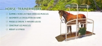 Horse-trainer-relax