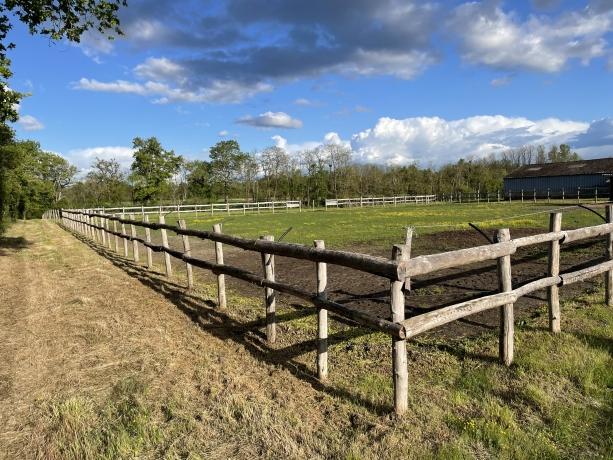Recherche-collaborateur---trice-pour-elevage-TF-dans-ferme-proche-Orleans