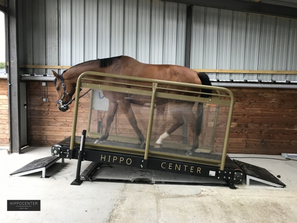 Tapis-roulant-Hippotrainer+-HIPPOCENTER-2