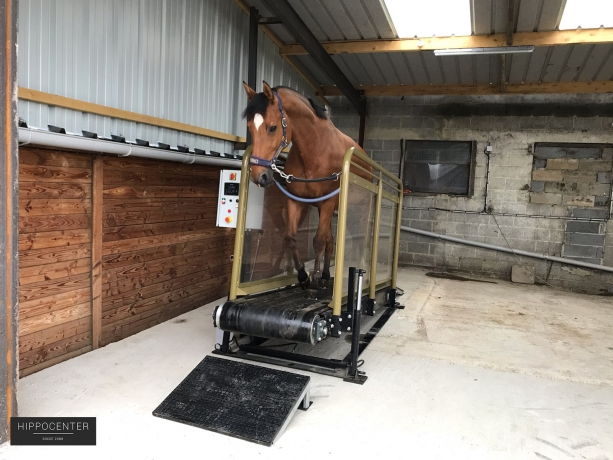 Tapis-roulant-Hippotrainer+-HIPPOCENTER-1