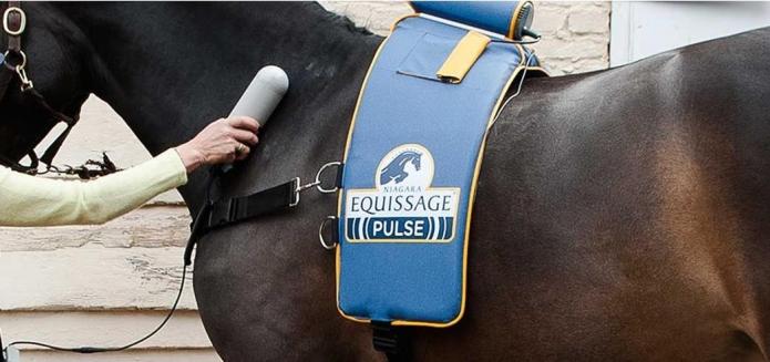 Ceinture-de-massage-Equissage-Pulse-et-une-unita©-manuelle-Pack-PRO-0