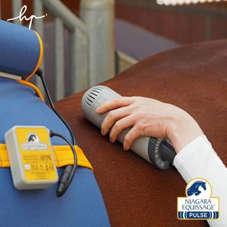 Ceinture-de-massage-Equissage-Pulse-et-deux-unita©s-manuelles-Pack-PRO+-0