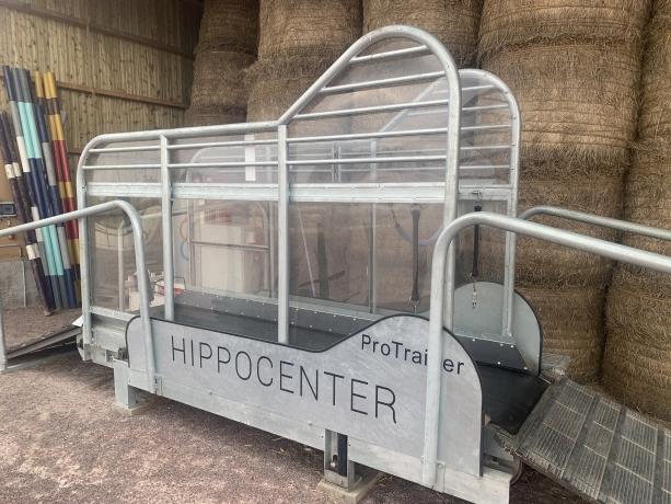 Tapis-Hippocenter-Occasion-2