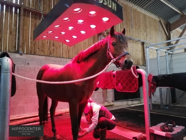 Solarium-pour-chevaux-HippoSun--HIPPOCENTER